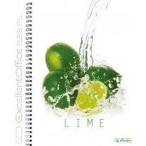 Kołobrulion HERLITZ FRESH FRUIT A4/70k kratka Limonki