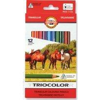 Kredki ołówkowe KOH-I-NOOR TRIOCOLOR 12 kolorów