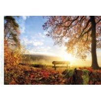Kalendarz trójdzielny MICHALCZYK I PROKOP Złota Jesień