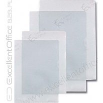 Ofertówka krystaliczna ESSELTE A4 przeźr. 150mic karton (100szt)